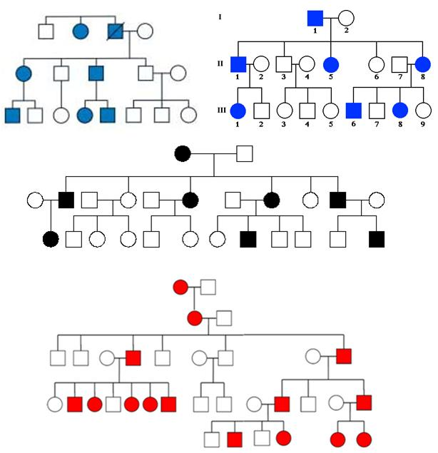 Autosomal Dominant Inheritance In Pedigree And Experiment